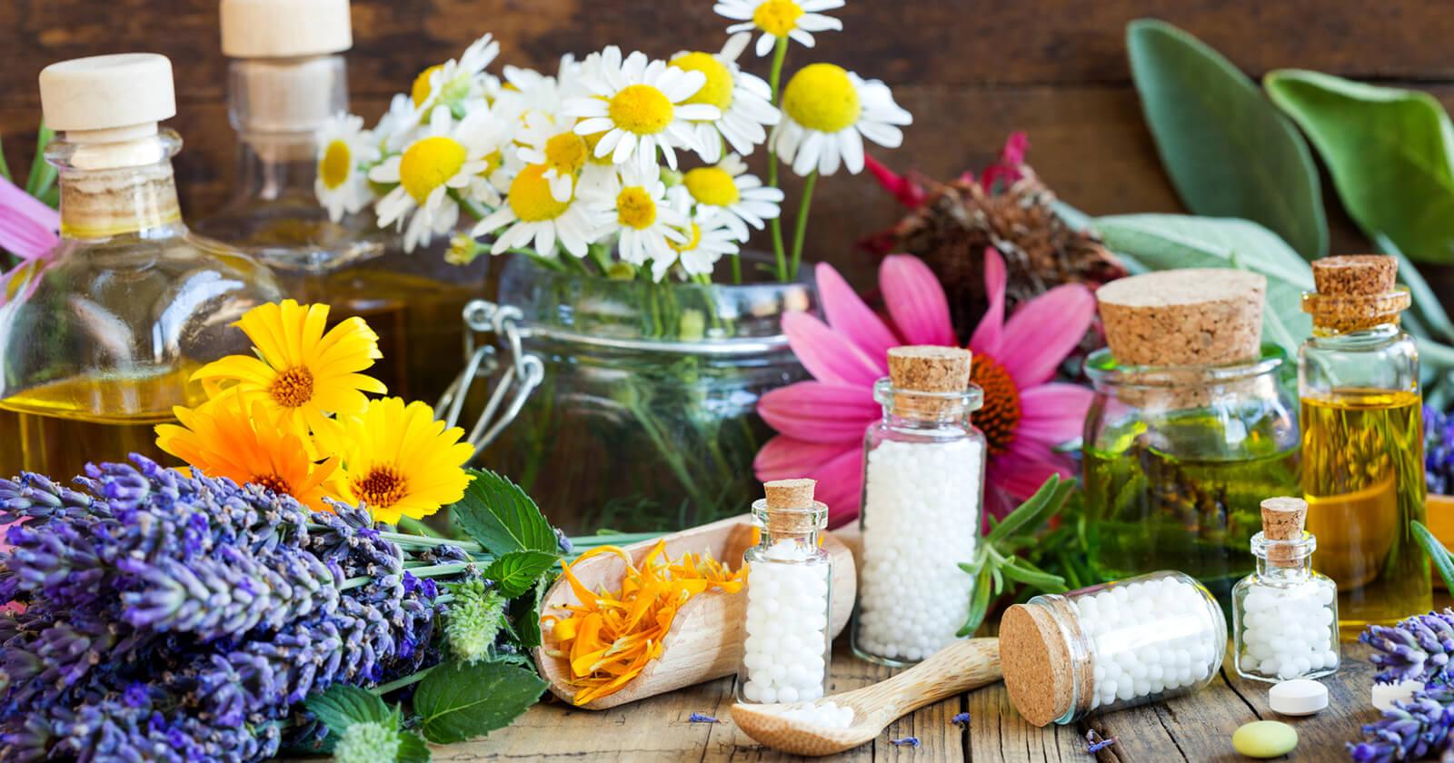 Heilpflanzen Für Magen & Darm Natürliche Hilfe