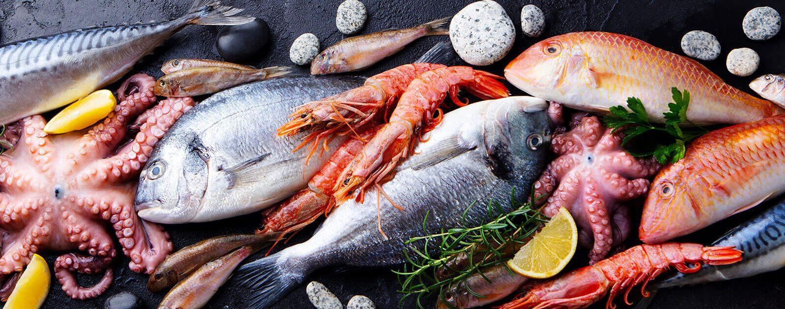 Fische und Meerestiere können eine Fischvergiftung auslösen, wenn sie verdorben oder giftig sind.