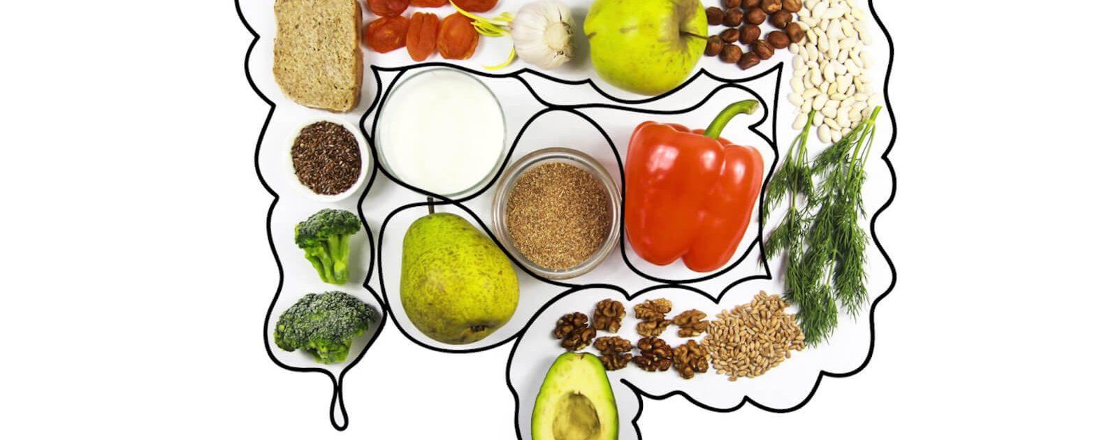Bildhafte Darstellung eines Darms mit Lebensmitteln: Bei Morbus Crohn sollten Betroffene auf bestimmte Speisen und Getränke verzichten.