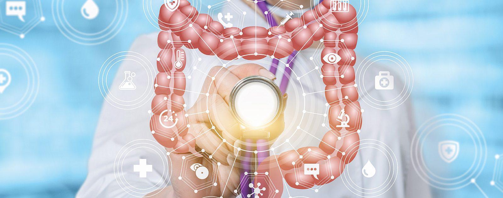 Arzt, der auf eine grafische Darstellung des Darms zeigt, um das Thema Darmuntersuchungen zu veranschaulichen.