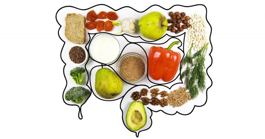 Grafische Darstellung von Lebensmitteln im Darm: Zur Vorbereitung auf die Koloskopie darf nicht alles gegessen werden.